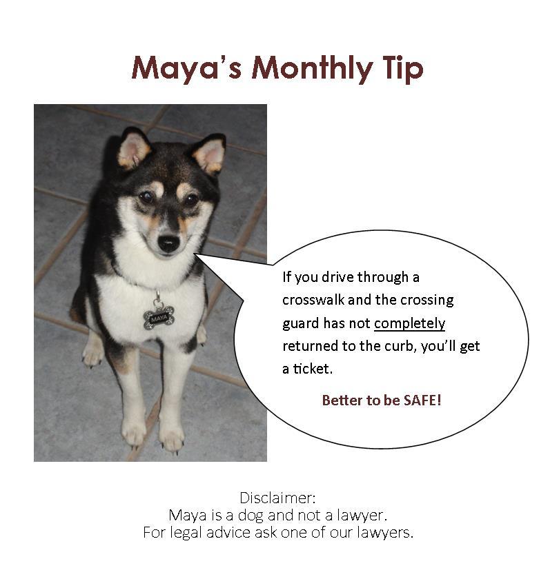 Maya's Tip 9-13