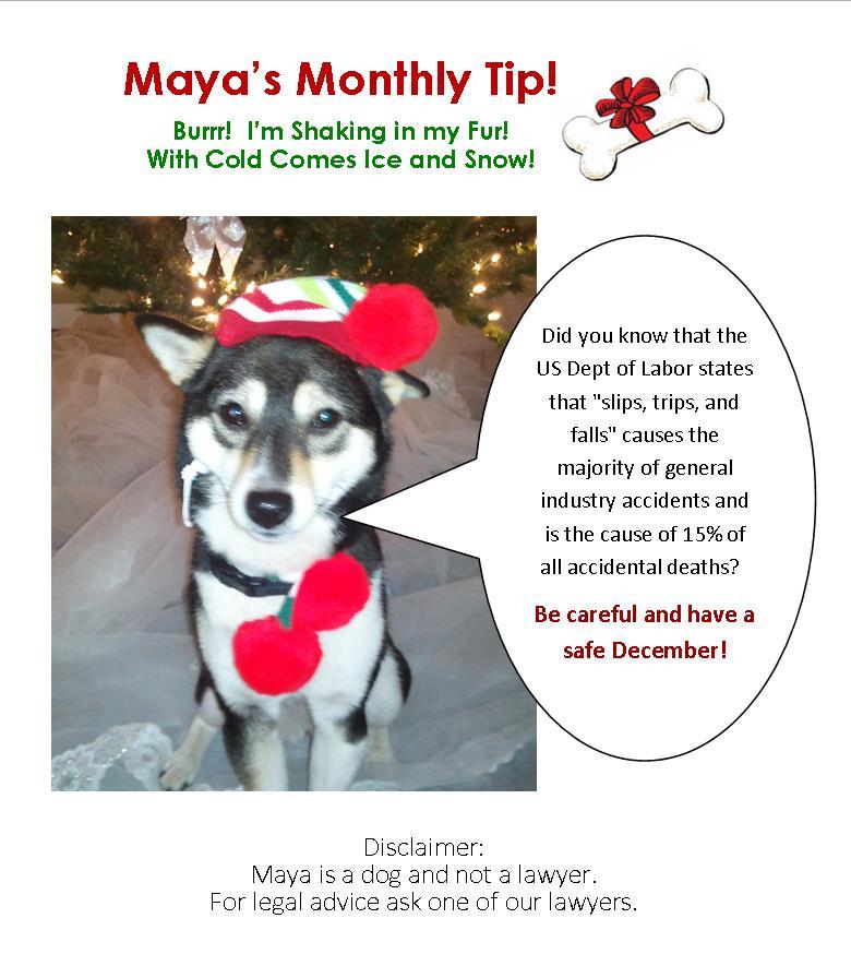 December Website Maya Insert