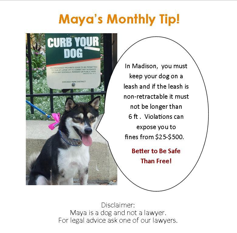 November Website Maya Insert